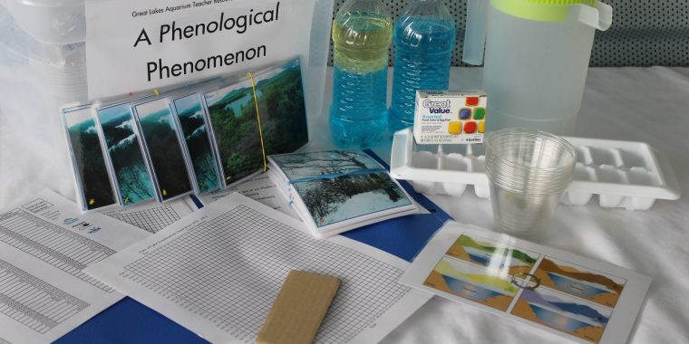 A Phenological Phenomenon Teaching Kit