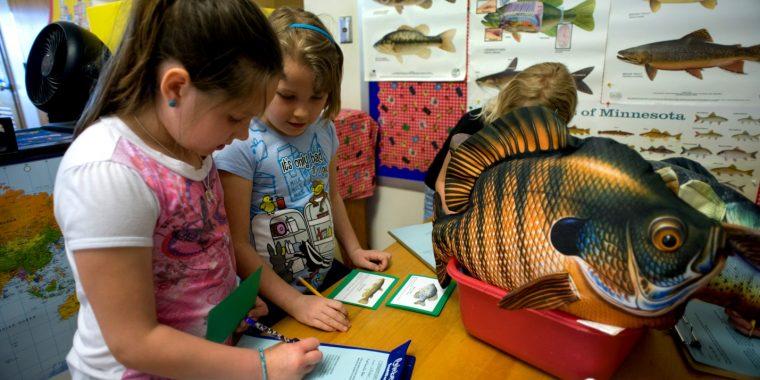 Fish Kit in Classroom